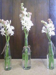 Update! Simple Tuberose Centerpiece.. Too Simple? :  wedding burlap diy flowers pink reception rustic simple twine white Tuberose3