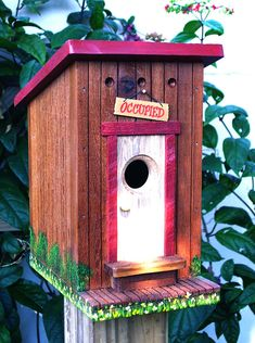 Bird House Kits Make Great Bird Houses Bird House Plans, Bird House Kits, Bird Houses Painted, Bird Houses Diy, Bird Aviary, Plank Walls, Kinds Of Birds, Painted Doors, Kit Homes