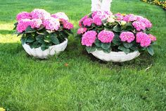 Arrange your hydrangeas from small to big vases to give more depth in your…