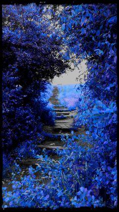El pasadizo azul irradia magia :)