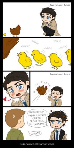 Be careful with chickens by Tsuki-Nekota on deviantART