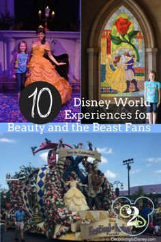 Disney World loves Belle just as much as we do. This list contains 9 attractions across 3 Parks at Walt Disney World that are all Beauty and the Beast themed.