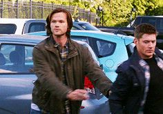 This is my favorite gif of Sammy. Ever.