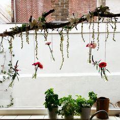 De Tante van Toon: Voorjaar in huis   decoration   flower decoration   spring decoration   flowers