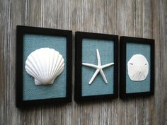 Cottage Chic Set of Beach Wall Art, Art, Sea Shells Home Decor, Beach House Wall…