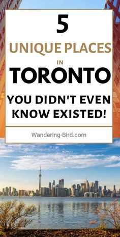 Looking for unique things to do in Toronto? Here are 12 fun and unusual activities to add to your Toronto itinerary- can you do them all? Visit Toronto, Toronto Travel, Toronto Canada, Canada Ontario, Trip To Toronto, Toronto Vacation, Ontario Travel, Montreal Canada, Alberta Canada