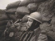A French member of the 92nd Infantry Regiment holds an Eagle Owl in a trench. The use of animals during the First World War was still evident as all involved nations struggled to immediately adapt to the more modern type of warfare. Horses were still used in cavalry charges, despite being mercilessly mowed down by machine guns as old methods met new technology.