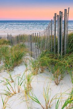 ~~Sand Dune Fences at sunrise over the Atlantic ocean on Cape Cod, Massachusetts by Henk Meijer~~ I Love The Beach, Pretty Beach, All Nature, Amazing Nature, Am Meer, Jolie Photo, Beach Scenes, Ocean Beach, Beach Grass