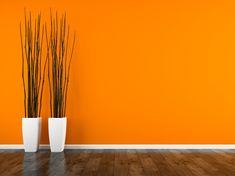 imagenes fotos en color naranaj - Búsqueda de Google Home Decor, Google Search, Pictures, Decoration Home, Room Decor, Home Interior Design, Home Decoration, Interior Design