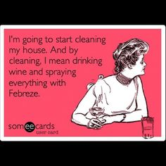 I'm going to start cleaning my house. And by cleaning I mean drinking wine and spraying everything with Febreeze Wine Birthday Meme, Friend Birthday Quotes Funny, Birthday Memes, 33rd Birthday, Birthday Messages, Work Humor, Humour, Wine Drinks, Beverages
