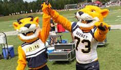 The updated (and brand new!) mascot costumes for Averett University. www.olympus-mascots.com