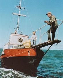 """Quint's fishing boat...""""Chief.....boats in the water....sharks in the water.....farewell to the do my wee Spanish lady"""""""