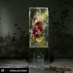 #Repost @driesvannoten (@get_repost) ・・・ For the fashion show of his Spring Summer 2017 womenswear collection, Dries Van Noten collaborated with Japanese floral artist @azumamakoto display 23 arrangements of fresh flowers frozen in heavy blocks of ice that melted over the duration of the show.  This time lapse video shows one of these blocks from the show melting  #driesvannoten#dvn #azumamakoto #timelapse #ice #flowers #makotoazuma