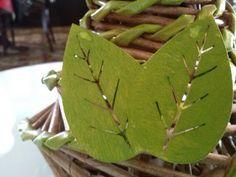 Las hojas de madera