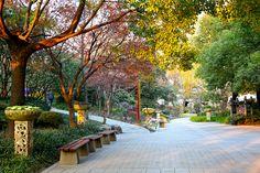 #Jingan Park #Shanghai #China