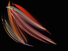 """Michael J. Stringer Westcliff-on-Sea, Regno Unito """"Una diatomea ingrandita 200 volte"""""""