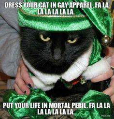 Dress your cat in gay apparel. Fa La La..
