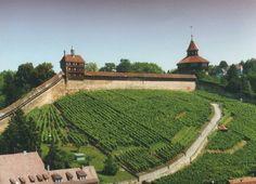 my hometown, esslingen am neckar, old castle wall