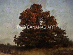 210 Tree Reflecting The Setting Sun by Richard Neuman Digital Media ~ 18 x 24