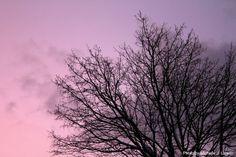 http://mylillecrazyworld.blogspot.no/2012/01/photo-nydelig-himmel-lrdag-14012012.html