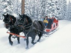 We're more than just a ski-town in the winter! Pagosa Springs Colorado, Durango Colorado, Colorado Trip, Winter Hiking, Winter Travel, Christmas Travel, Christmas Vacation, Christmas Destinations, Family Christmas
