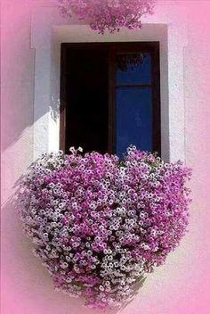 Hanging Window Flower Basket in Greece