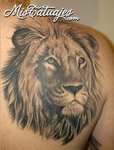 Tatuaje: Rostro de Leon - Tatuajes, Fotos, Tattoos