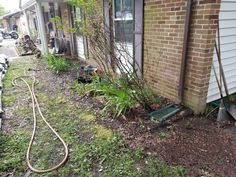 The start of the flower garden. Need to get it cleaned and prepped.