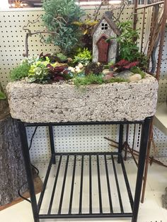 Fairy Garden with water feature by Kristin Middleton #colonialgardenskc