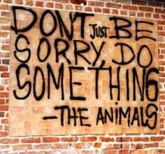 Stop animal cruelty Dont just be sorry do something