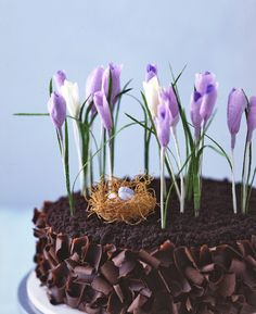 paper snowdrops and crocuses - perfect decor for Easter! Think I'll do with the flourless chocolate cake...