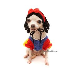 Snow White Dog Costume with Crochet Dog Hat. Any Custom Dog Clothes are welcome. Disney Dog Costume, Pet Halloween Costumes, Funny Costumes, Pet Costumes, Halloween Kostüm, Crochet Dog Clothes, Disney Dogs, Cat Hat, Dog Sweaters