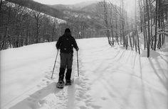 Je pratique la randonnée pédestre durant toute l'année, et dès que vient l'hiver, je sors les raquettes. Avec mon compagnon, nous allons souvent dans le Massif Central ou dans les Hautes-Pyrénées faire des raquettes...la suite c'est sur le blog :)