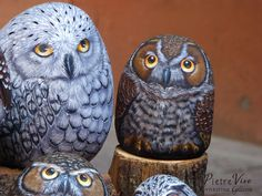 Stone painted Owls by Ernestina Gallina