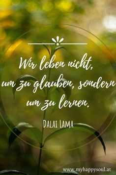 Wir leben nicht,um zu glauben, sondern um zu lernen. Dalai Lama. Schöne Sprüche und Zitate zum Thema Leben und Lernen. #lernen #Leben #Freude #Spruch #Zitat Dalai Lama, Self Discovery, Finding Yourself, Live And Learn, Positive Sayings
