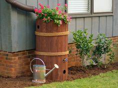 How to Build a Rain Barrel livedan330.com