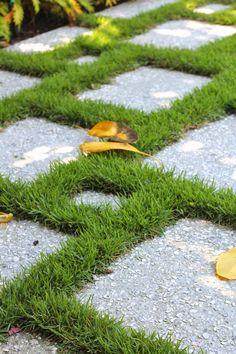mondo grass + coquina shell pavers.