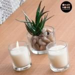 Oh My Home Aromatic Candles With Decorative Cactus (Pack Of Led Candles, Scented Candles, Chandeliers, Prices Candles, Oh My Home, Cactus Decor, Glass Of Milk, Candle Holders, Ethnic Recipes