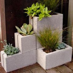 Stacked cinder blocks, with their readymade potting compartments, create a geometric platform to show off a variety of plants. Unfinished or painted in bold colors, cinder blocks make quick and easy planters with structural heft.