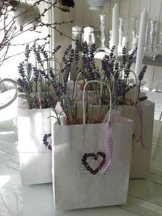 #Lavender #lavande