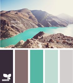 your color palette.  can use others for acccents here and there, but this is your home base. (include the white)