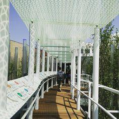 Enel si è data da fare con un bellissimo racconto sull'energia e sul futuro delle rinnovabili. #expo2015