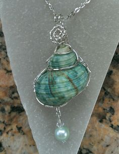 Jewelry Making Shells Shell with silver by Renee Ann Wire Wrapped Jewelry, Wire Jewelry, Jewelry Crafts, Jewelry Art, Jewlery, Seashell Jewelry, Seashell Crafts, Sea Glass Jewelry, Custom Jewelry