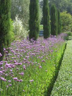 Hangbepflanzung beautiful garden pinterest g rten for Peter janke design mit pflanzen