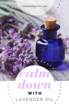Check out Sleep Authorities' guide to lavender oil and how it can improve your sleep and promote calmness. Lavender Oil For Sleep, Lavendar Oil, Insomnia Remedies, Natural Sleep Remedies, Sleep And Mental Health, Good Sleep, Sleep Better, Oils For Sleep, Sleep Issues
