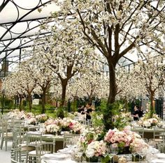 Wedding Decor Ideas - The dome of the towering marquee, shipped over from Belgium especially for the occasion, was almost filled with full-sized flowering cherry trees