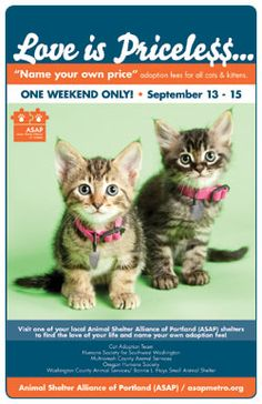 Love is Priceless adoption special, Sept. 13-15. You can't put a price on love, so this weekend, we won't even try! Fri-Sun, name your own adoption fee on cats & kittens. Adoption counselors will, as always, help make the best matches possible for pets & people.