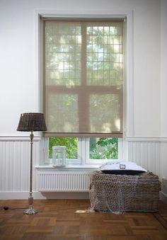 See thru blinds