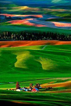 Palouse Hills (Washington & Idaho) // by Doug Solis...... #Relax more with healing sounds: