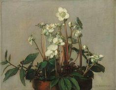 jan bogaerts artist - Поиск в Google